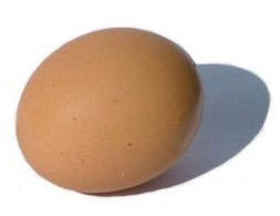 An egg shell has thousands of small pores