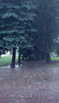 Fun Rain Facts for Kids - Interesting Information about Rain