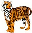 Fun Tiger Facts for KidsTiger Image For Kids