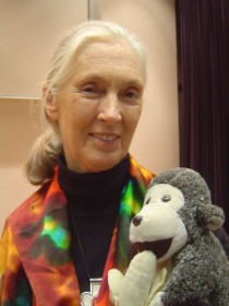 Jane Goodall facts