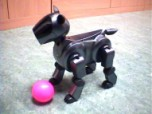 Early AIBO