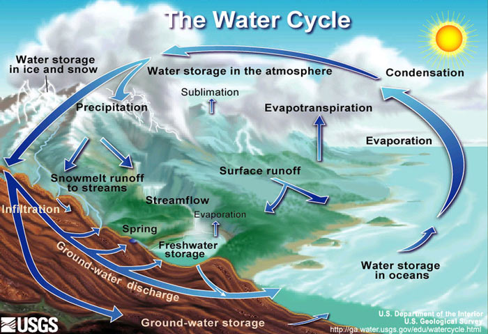 The Water Cycle For Kids How It Works Diagram Facts