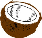 Fun Coconut Facts for Kids - Interesting Information about Coconuts