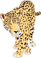 Interesting facts about Jaguars