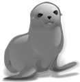 Interesting facts about Seals