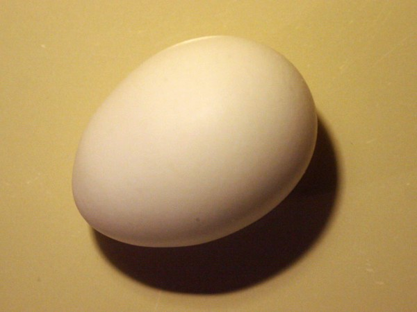 This photo shows a close up view of a chicken egg and its shadow from above