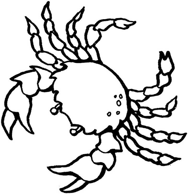 This coloring page for kids features a birds eye view of a crab with large pincers.