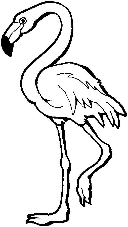 this coloring page for kids features a flamingo standing on one leg the flamingo has - Flamingo Coloring Page