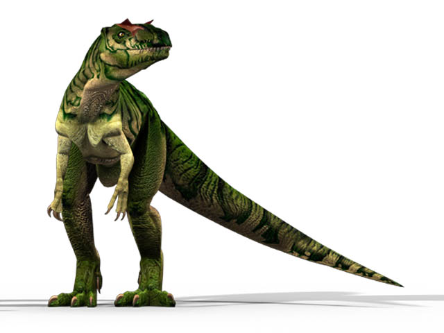 This CGI drawing shows the possible appearance of Allosaurus, a dinosaur from the late Jurassic Period (around 150 million years ago). First described back in 1877, Allosaurus become one of the first well known dinosaurs. It was a carnivore (meat eater) and weighed around 2.3 tons.