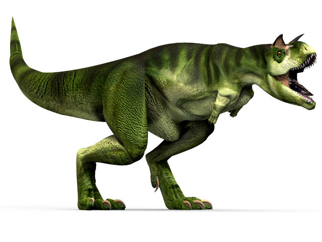 This CGI drawing shows the possible appearance of Carnotaurus, a dinosaur that lived at the end of the Cretaceous Period (around 66 million years ago). Carnotaurus was a meat eating dinosaur (carnivore) with small arms and fingers that did not move.