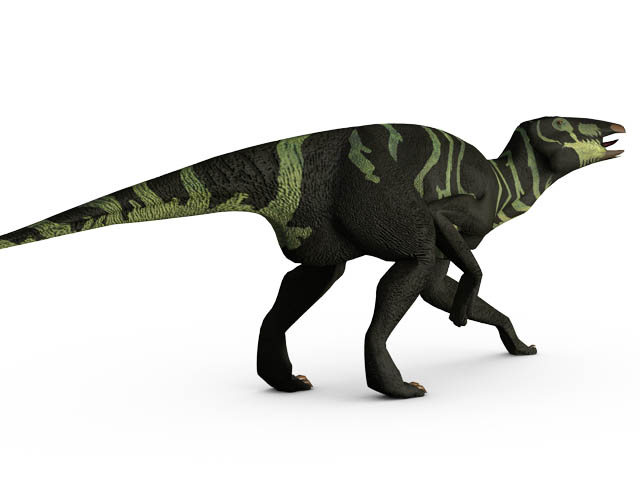 This CGI drawing shows the possible appearance of Edmontosaurus, a crestless, duck-billed dinosaur from the late Cretaceous Period (around 70 million years ago). Edmontosaurus reached up to 13 metres (43 feet) in length and weighed around 4 tons. The first Edmontosaurus fossils were found in Alberta, Canada in 1917.