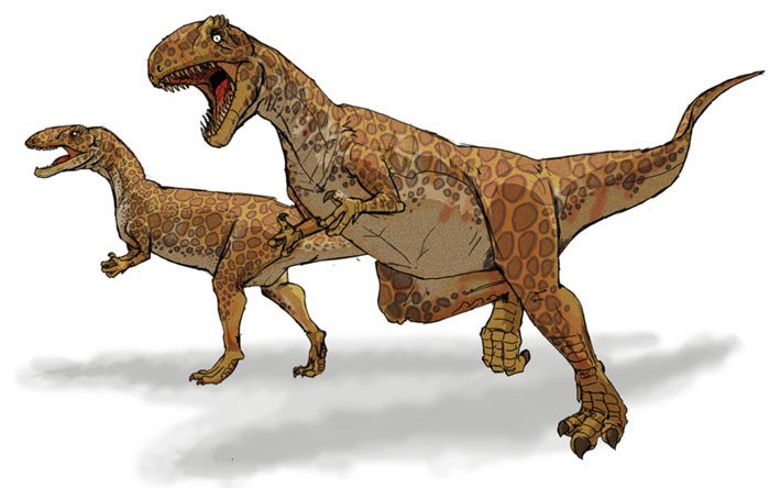 This drawing shows the possible appearance of Megalosaurus, a dinosaur from the middle Jurassic Period (around 166 million years ago). Megalosaurus was a large Theropod and the first dinosaur to be formally named by the scientific community in 1824. It was a carnivore (meat eater) and reached around 9 metres (30 feet) in length.