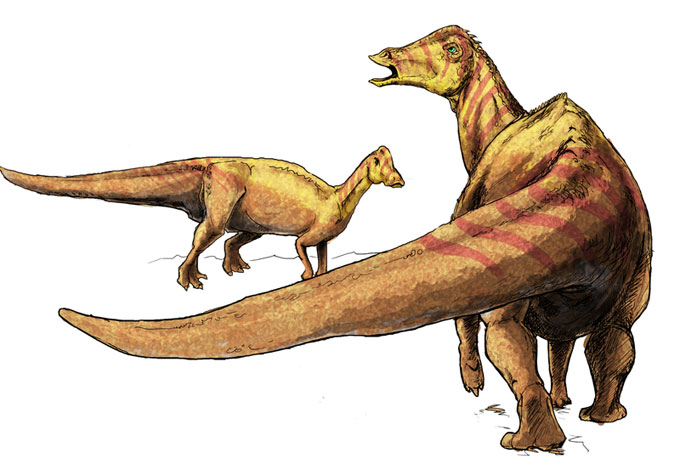 This drawing shows the possible appearance of Nipponosaurus (meaning 'Japanese lizard'), a dinosaur from the late Cretaceous Period. Fossils of the Nipponsaurus were first found in Japan in 1934.