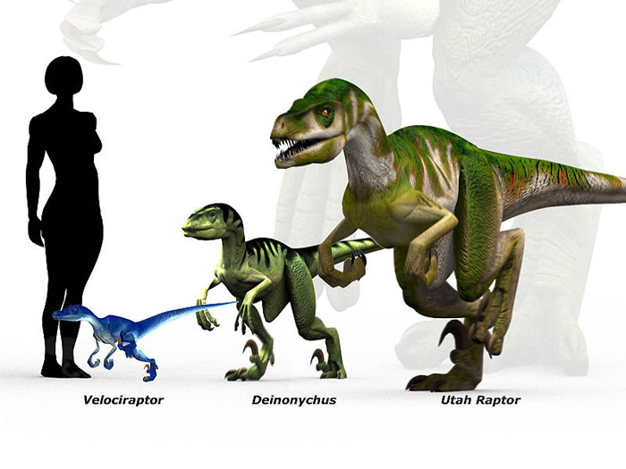 Utahraptor Facts For Kids