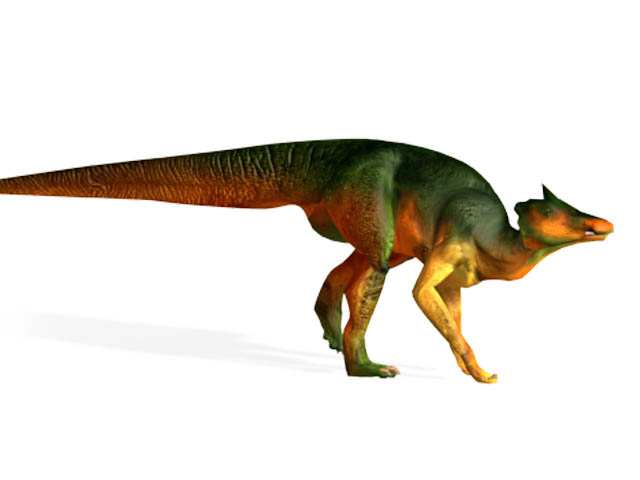 This CGI drawing shows the possible appearance of Saurolophus, a dinosaur from the late Cretaceous Period (around 69 million years ago). It featured a spike shaped crest which pointed backwards from its skull and is from the same family of dinosaurs as Parasaurolophus. Fossil remains of Saurolophus have been found on more than one continent (North America and Asia).