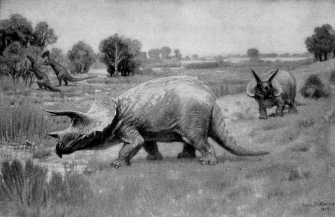 This picture shows a Triceratops illustration drawn in 1904 by Charles Knight. Two Triceratops can be seen in the foreground while two more dinosaurs can be seen feeding on plants in the background.