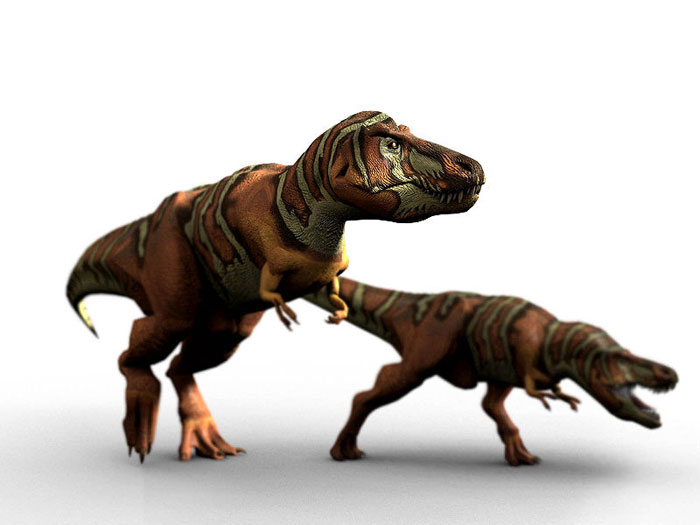 This CGI picture shows the possible appearance of two Tyrannosaurus rex dinosaurs as they hunt for prey.