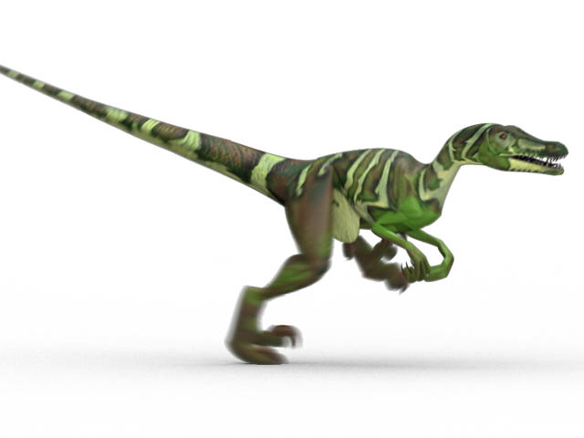 This CGI drawing shows the possible appearance of Velociraptor, a dinosaur from the late Cretaceous Period (around 73 million years ago). The Velociraptor is a well known dinosaur thanks to some nasty looking claws and appearances in movies such as Jurassic Park. It was smaller than it is often represented though, more the size of a Turkey than an adult human.