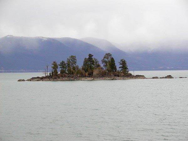 A small island sits in the middle of a large lake. The lake features around a dozen trees but not much else other than the rocks that surround it.