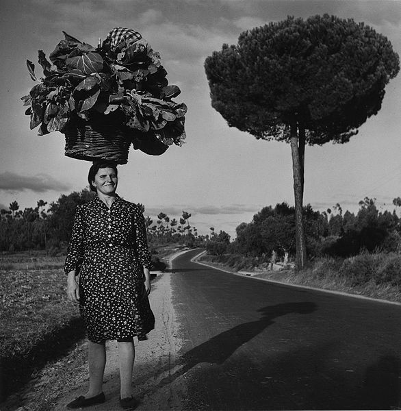 This depth perception illusion makes the load the woman is carrying on her head appear as large as the small tree in the background when in fact it is not.