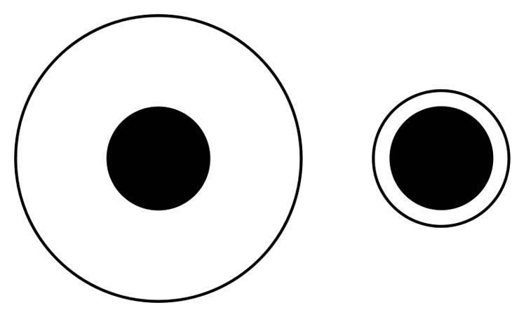 Fig. 2.2: Ilusión de Delboeuf. Los círculos negros al interior parecen, pero no son, de distinto tamaño.