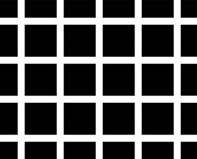 Dark spots seem to appear at the intersections in this example of the Hermann grid illusion. This effect is often explained by a neural process called lateral inhibition.