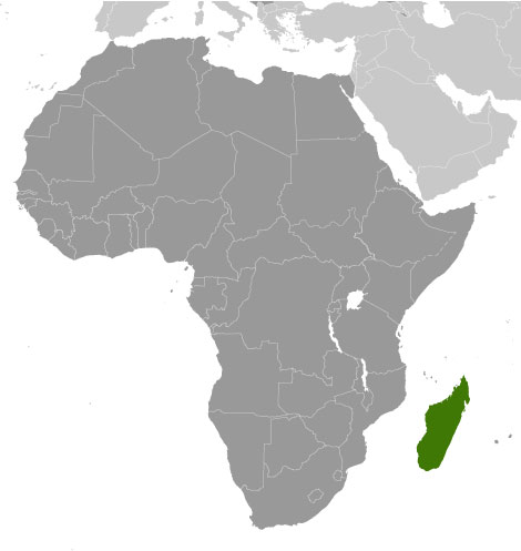 Fun Madagascar Facts For Kids Interesting Information About - Facts about maps for kids