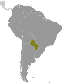 Paraguay location