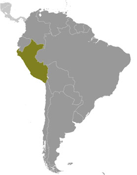 Peru Map with Cities - Free Pictures of Country Maps Cities Map Of Peru on