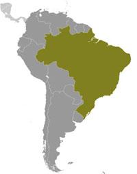 <b>Fun</b> Brazil <b>Facts for Kids</b> - <b>Interesting</b> Information about Brazil