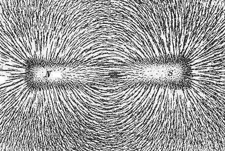 Iron filings are used in this picture to show the path of magnetic field lines created by a magnet.