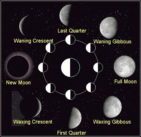 Learn more about the phases of the Moon with this useful moon phases diagram. The phases include new moon, waning crescent, last quarter, waning gibbous, full moon, waxing gibbous, first quarter and waxing crescent.