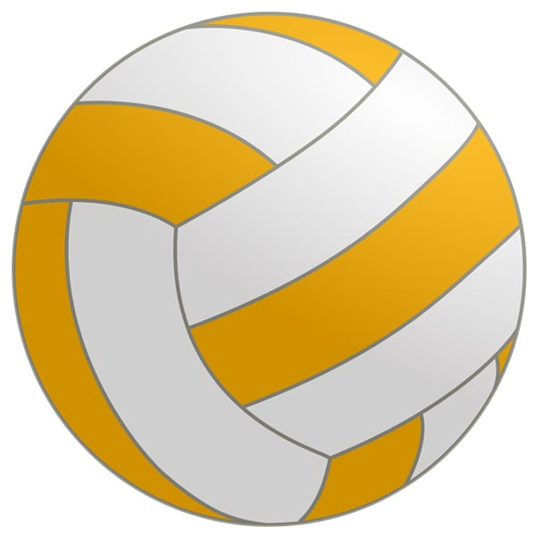 This image is a clip art icon of a netball.