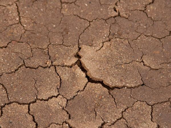 This photo shows dried mud cracking after a season of little rain.